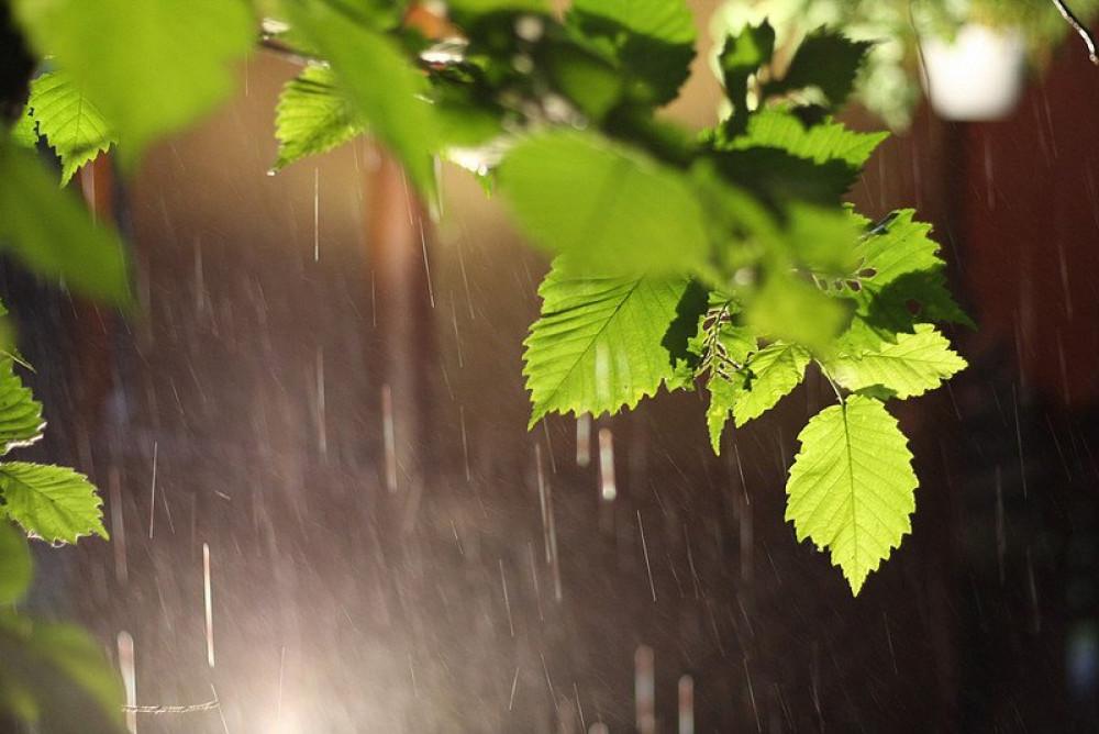 На Прикарпатті дощитиме