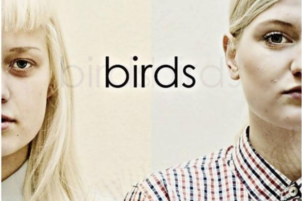 birds-1__large