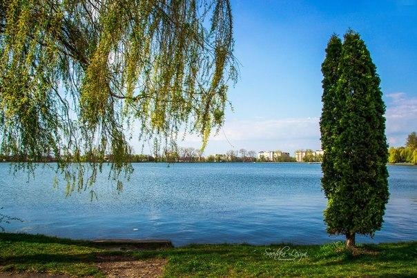 "Результат пошуку зображень за запитом ""Франківськ міське озеро"""